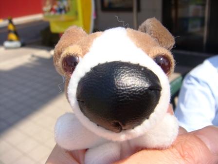 """顔キメがまったく効かなかったこの子。マクドナルドのハッピーセットを買うともらえる""""THE DOG""""の中の一頭です。サイバーショット(cyber-shot)DSC-T100で撮影"""